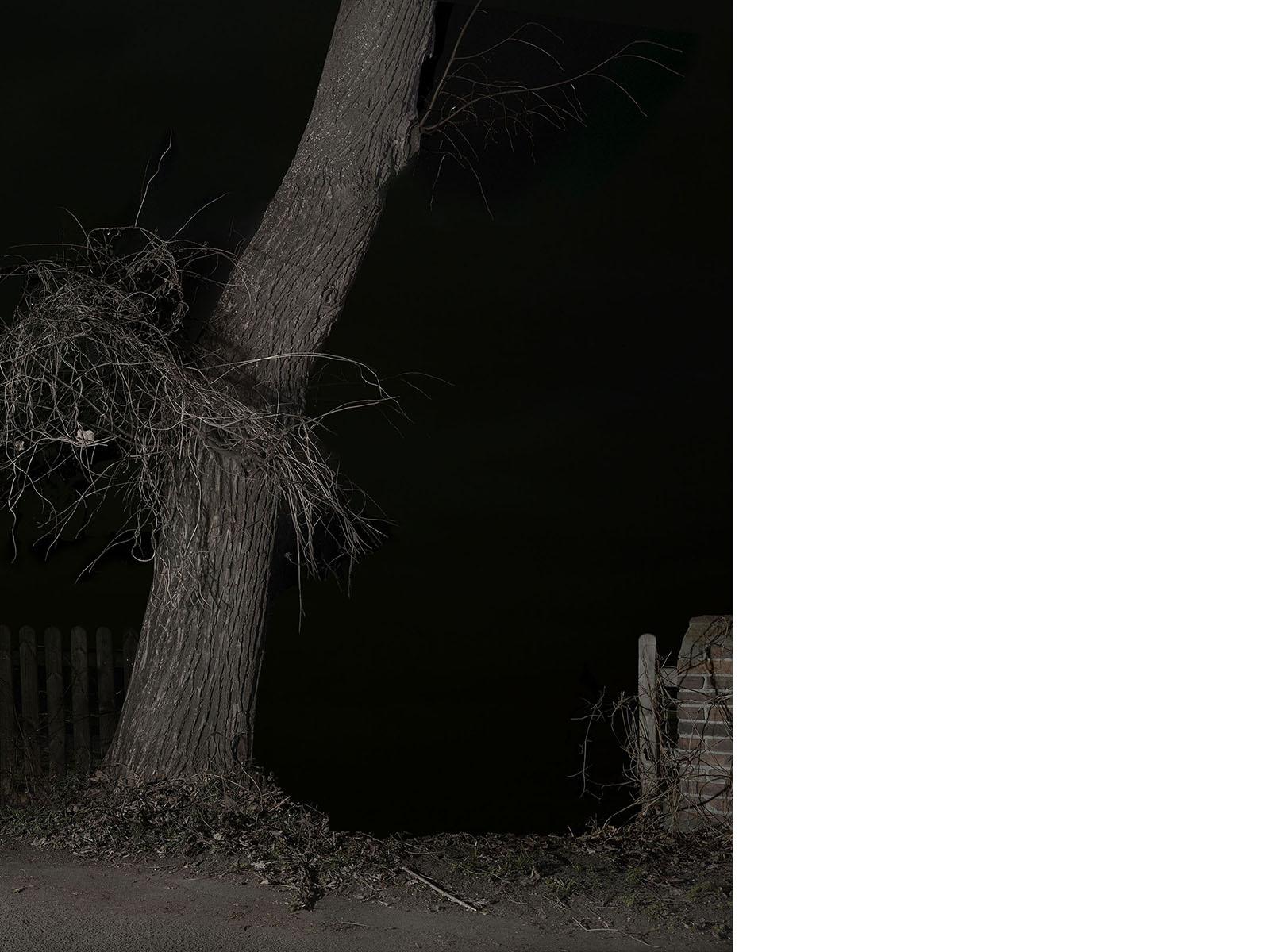 SL#6, 2017, 65 x 50 cm, Inkjet print