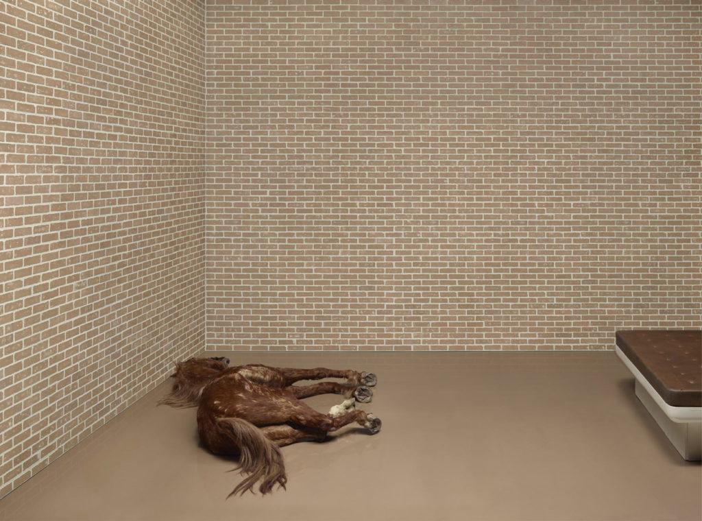 Vorsprung, 2012, 150 x 202 cm, Lightbox