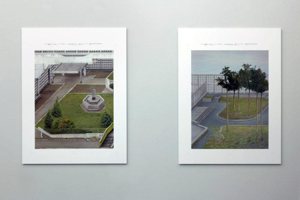 darktaxa-project, Schierke und Seinicke; Frankfurt, 2020, © M. Reisch